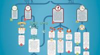 infographic_procedural_en